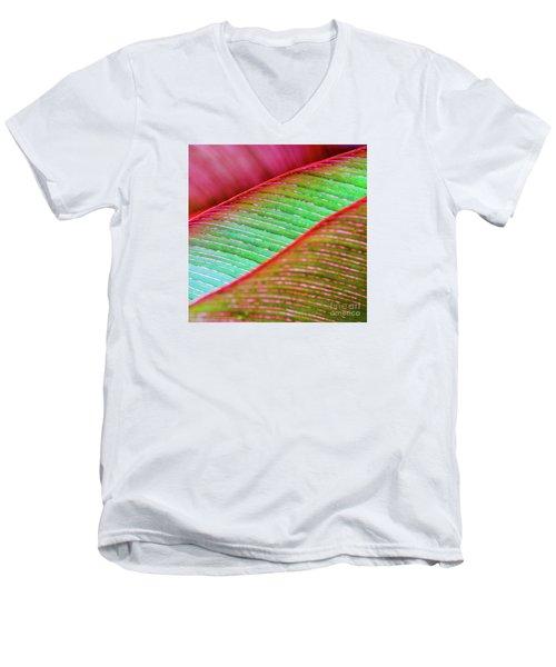 Leaves In Color  Men's V-Neck T-Shirt