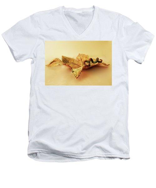 Leaf Plate 1 Men's V-Neck T-Shirt by Itzhak Richter