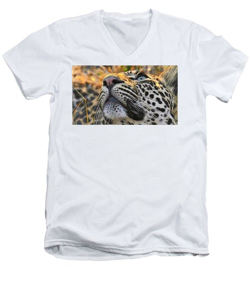 Leopard Aloft Men's V-Neck T-Shirt