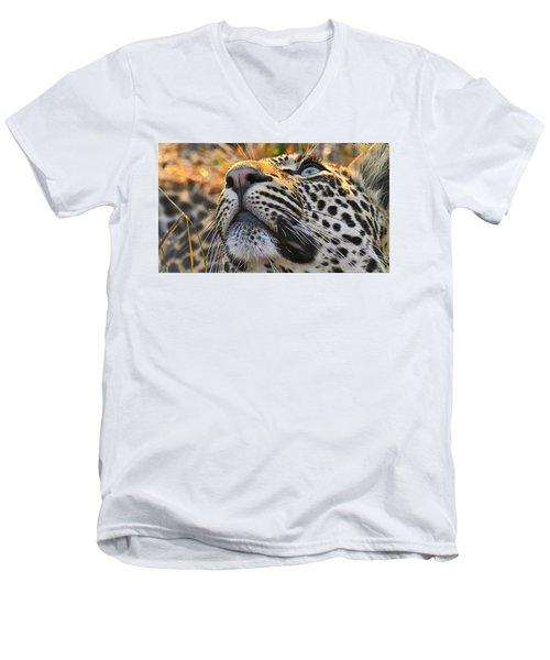 Leopard Aloft Men's V-Neck T-Shirt