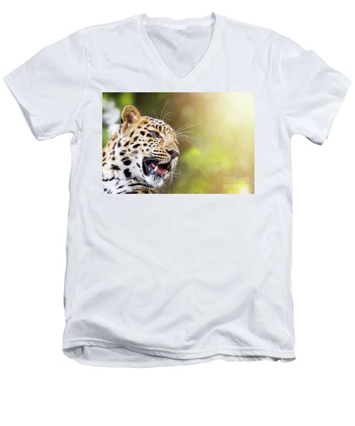 Leopard In Sunlight Men's V-Neck T-Shirt