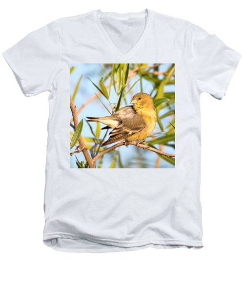Men's V-Neck T-Shirt featuring the photograph Lesser Goldfinch by Dan McManus
