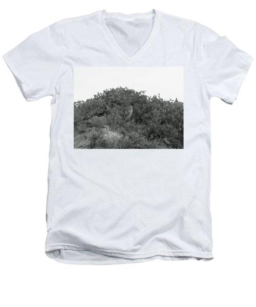 Lesser Horned Owl Men's V-Neck T-Shirt