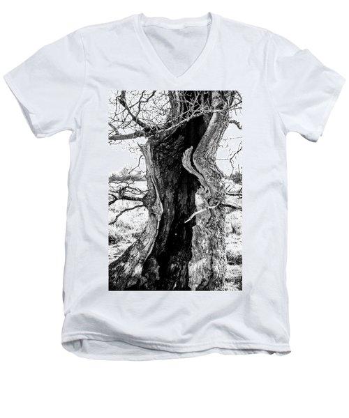 Lightning Tree Men's V-Neck T-Shirt