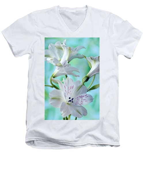Lily Of The Incas Men's V-Neck T-Shirt by Terence Davis