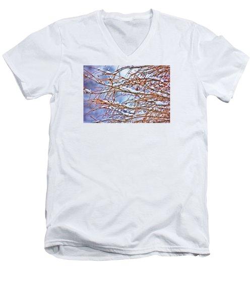Lingering Winter Snow Men's V-Neck T-Shirt