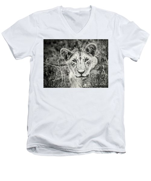 Lioness Portrait Men's V-Neck T-Shirt