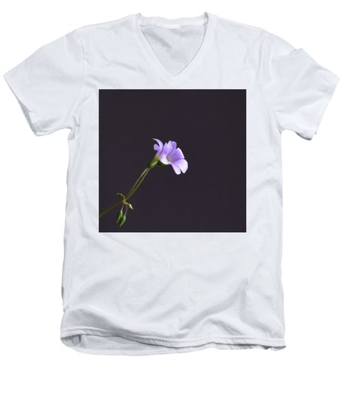 Little Lavender Flowers Men's V-Neck T-Shirt