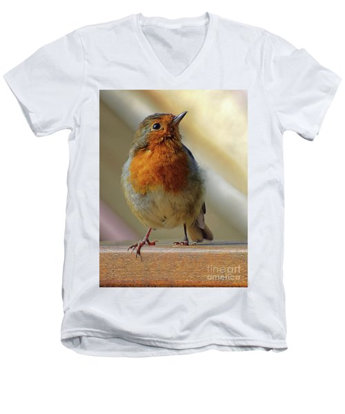 Little Robin Redbreast Men's V-Neck T-Shirt by Lynn Bolt