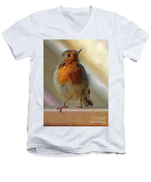 Little Robin Redbreast Men's V-Neck T-Shirt
