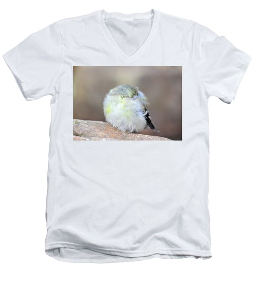 Little Sleeping Goldfinch Men's V-Neck T-Shirt