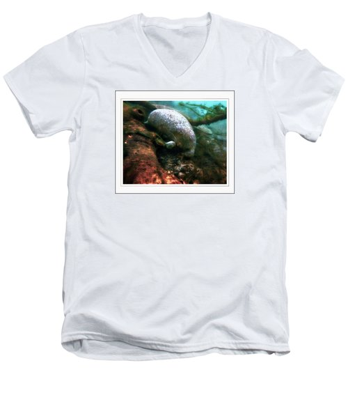 Little White Manatee Men's V-Neck T-Shirt