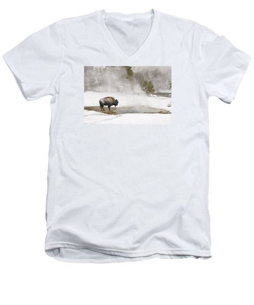 Men's V-Neck T-Shirt featuring the photograph Bison Keeping Warm by Gary Lengyel