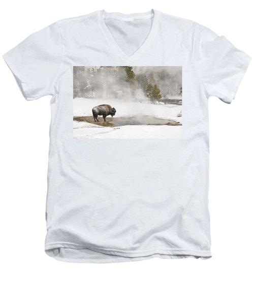 Bison Keeping Warm Men's V-Neck T-Shirt
