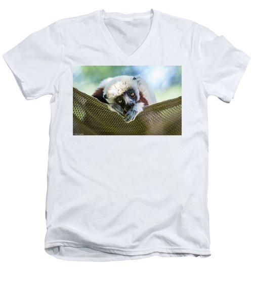 Lonely Lemur Men's V-Neck T-Shirt