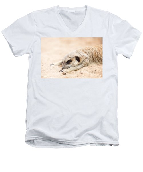 Long Day In Meerkat Village Men's V-Neck T-Shirt