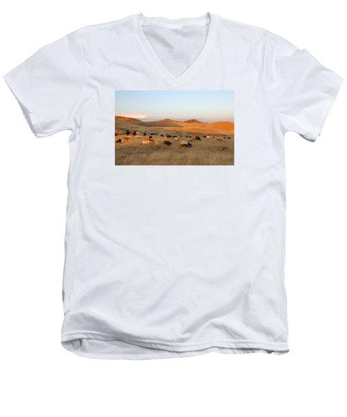 Longhorns Men's V-Neck T-Shirt by Diane Bohna