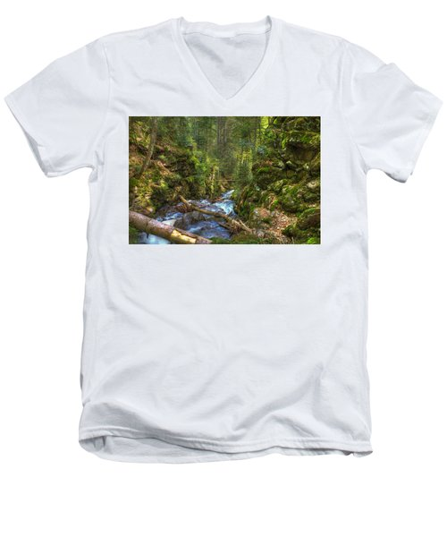 Looking Down The Gorge Men's V-Neck T-Shirt