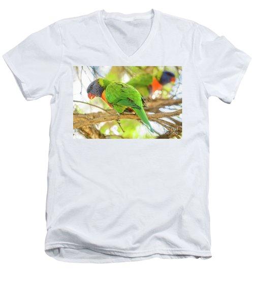 Lorrikeets 02 Men's V-Neck T-Shirt
