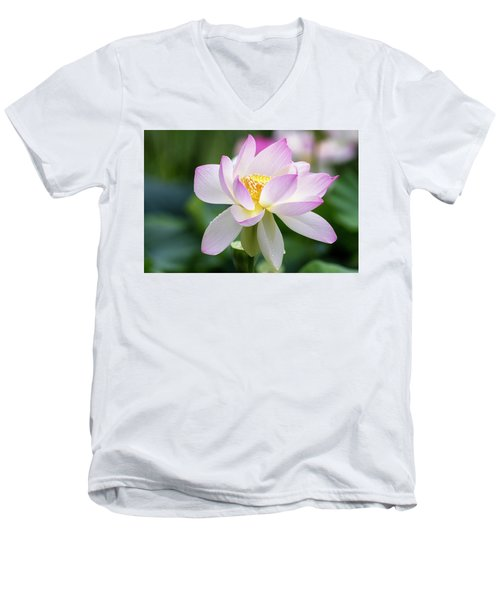 Lotus Men's V-Neck T-Shirt by Edward Kreis