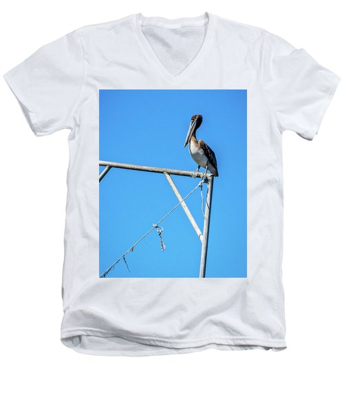 Louisiana's State Bird Men's V-Neck T-Shirt by Andy Crawford