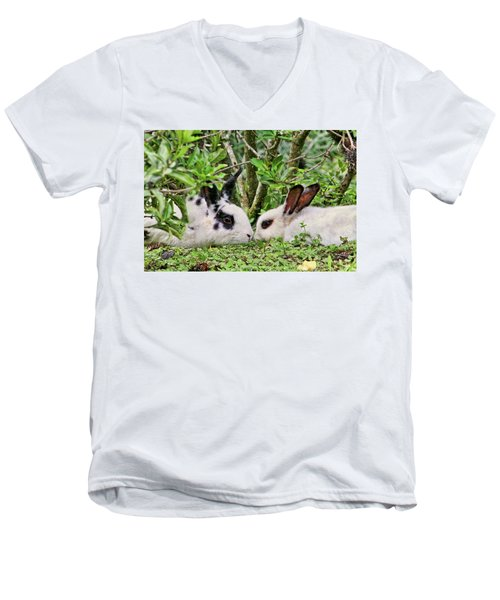 Love Bunnies In Costa Rica Men's V-Neck T-Shirt by Peggy Collins