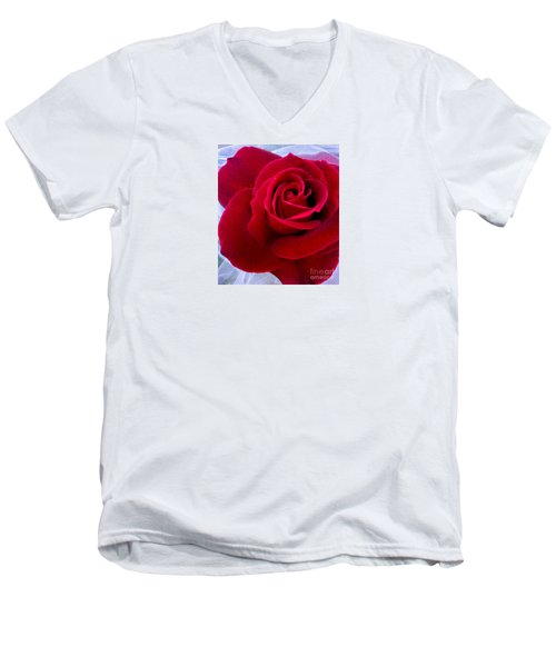 Men's V-Neck T-Shirt featuring the photograph Love Red Rose by Haleh Mahbod