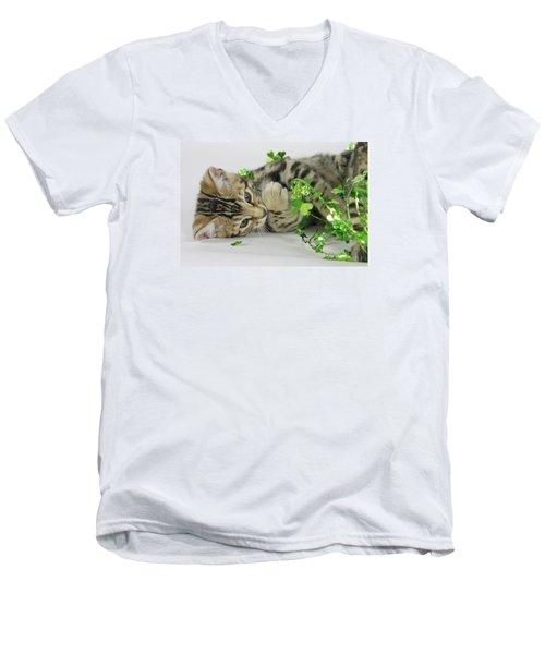 Lucky Kitten Men's V-Neck T-Shirt by Shoal Hollingsworth