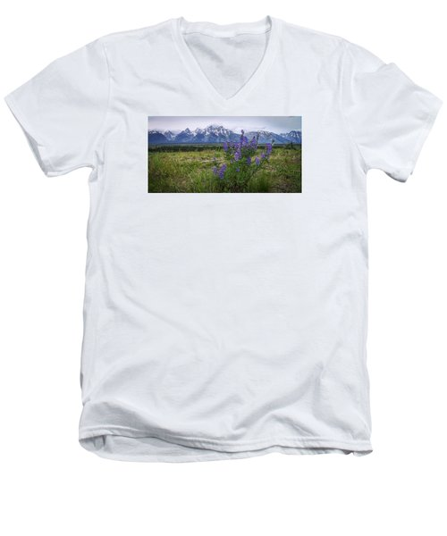 Lupine Beauty Men's V-Neck T-Shirt by Chad Dutson