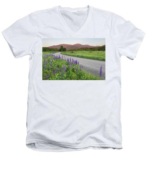 Lupine Sunset Road Men's V-Neck T-Shirt