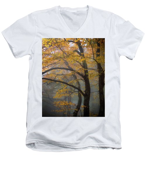 Magical Forest Blue Ridge Parkway Men's V-Neck T-Shirt
