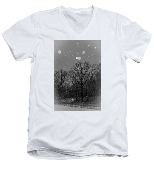Men's V-Neck T-Shirt featuring the photograph Majestic  by Annette Berglund