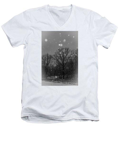 Majestic  Men's V-Neck T-Shirt by Annette Berglund