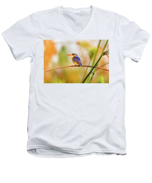 Malachite Kingfisher Hunting Men's V-Neck T-Shirt