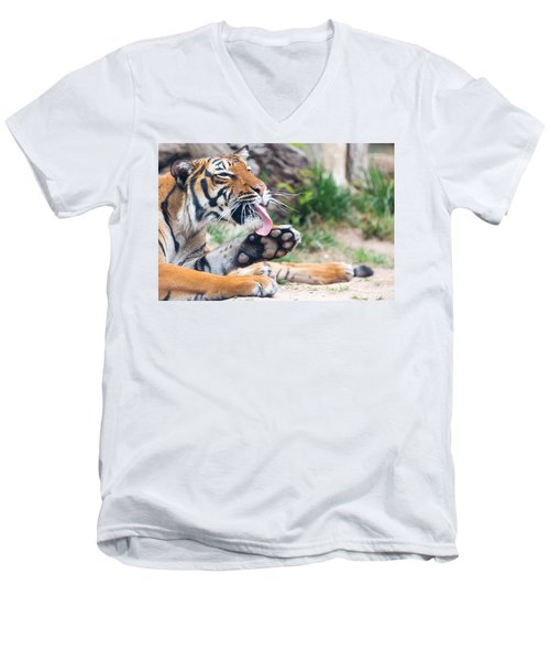 Malayan Tiger Grooming Men's V-Neck T-Shirt