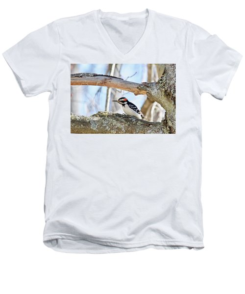 Men's V-Neck T-Shirt featuring the photograph Male Downey Woodpecker 1112 by Michael Peychich