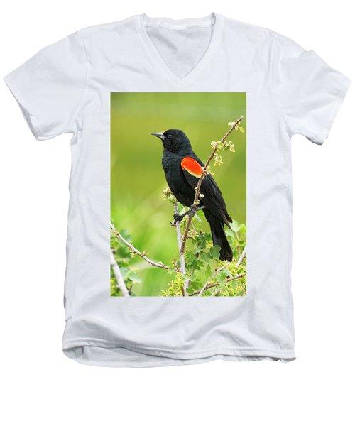 Male Red-winged Blackbird Men's V-Neck T-Shirt