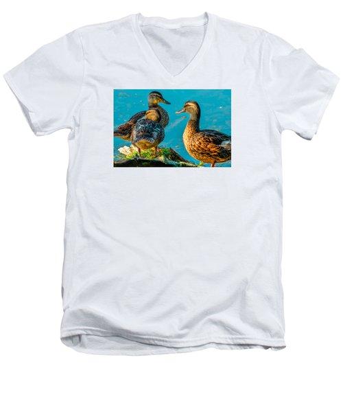 Men's V-Neck T-Shirt featuring the photograph Mallard Ducks 2 by Brian Stevens