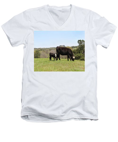 Mama Cow And Calf In Texas Pasture Men's V-Neck T-Shirt