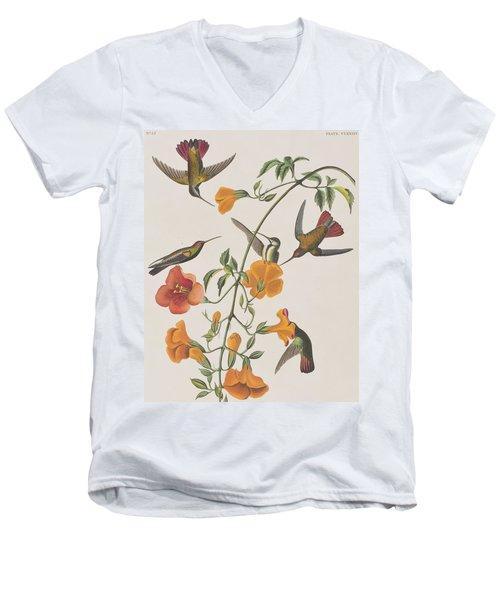 Mango Humming Bird Men's V-Neck T-Shirt