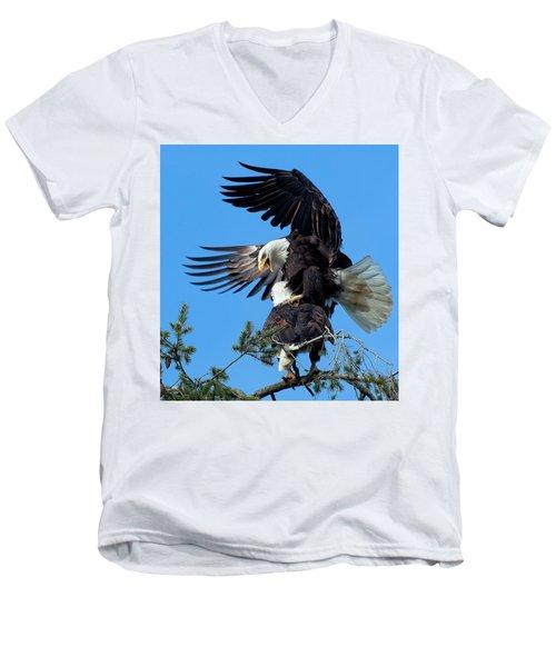 Mating Ritual Men's V-Neck T-Shirt by Sheldon Bilsker