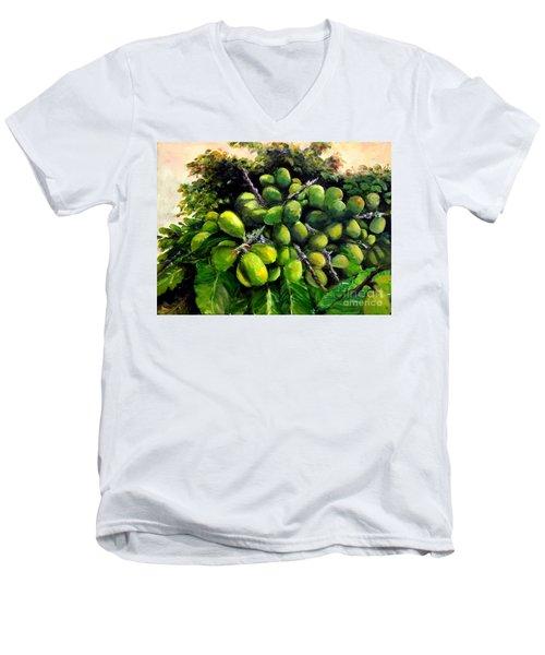 Matoa Fruit Men's V-Neck T-Shirt