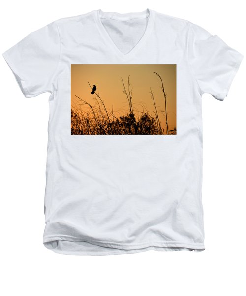 Melody At Dusk Men's V-Neck T-Shirt