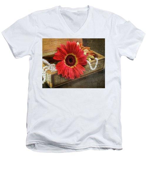 Memories And Mementos Men's V-Neck T-Shirt