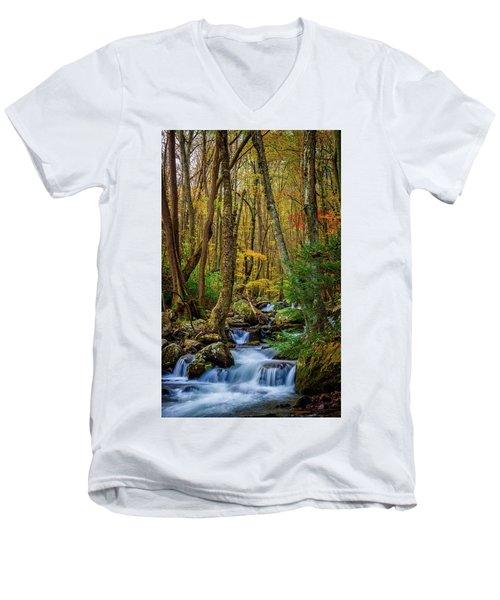 Mill Creek In Fall #1 Men's V-Neck T-Shirt