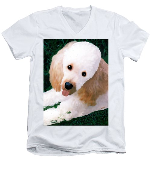 Men's V-Neck T-Shirt featuring the photograph Miniature Poodle Albie by Marian Cates