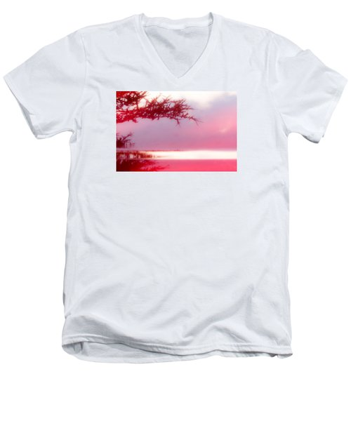 Misty Morn Men's V-Neck T-Shirt