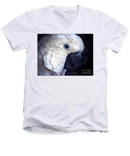 Moluccan Cockatoo Men's V-Neck T-Shirt by Melissa Messick