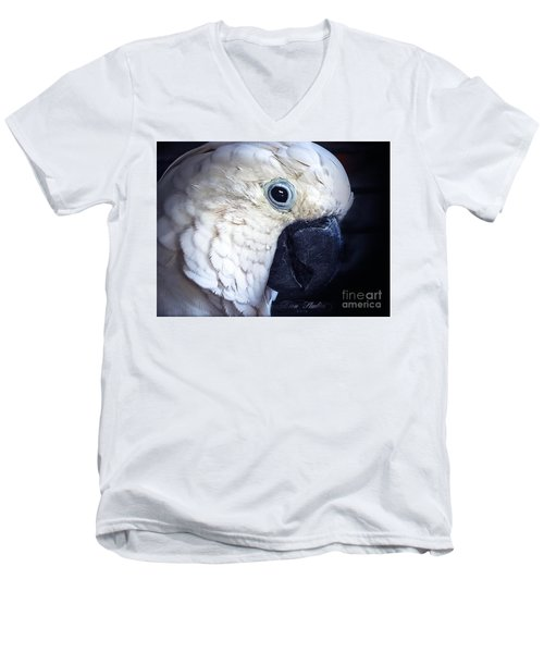 Moluccan Cockatoo Men's V-Neck T-Shirt