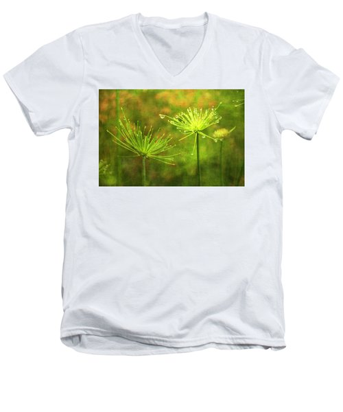 Morning Dew Men's V-Neck T-Shirt